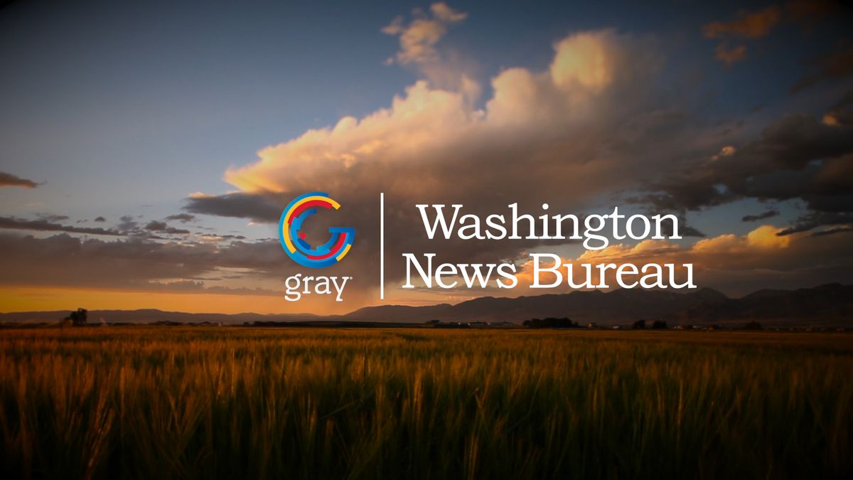 Gray Television stations across the country will begin airing the national anthem each day. (Source: Gray DC)