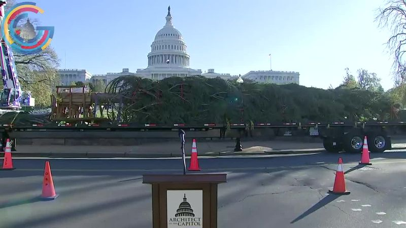 U.S. Capitol Christmas Tree arrives in D.C. from Colorado
